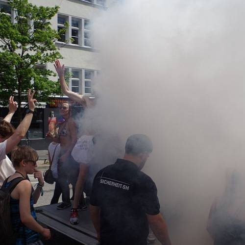 CSD Kiel 2014 Demonstration - Bild 8